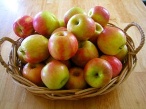 MCCDC_Apples_Basket